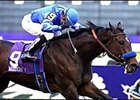 Champion Tempera, shown winning the 2001 Breeders' Cup Juvenile Fillies, finished second in her 2001 debut at Nad al Sheba Thursday.