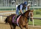 Eclipse Award winner Dreaming of Anna returns to the turf in the Double Delta Stakes.