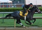 General Quarters breezed five furlongs at Churchill Downs on April 23.