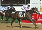 "Dubai Golden Shaheen winner Benny the Bull is the one to beat in the True North.<br><a target=""blank"" href=""http://www.bloodhorse.com/horse-racing/photo-store?ref=http%3A%2F%2Fpictopia.com%2Fperl%2Fgal%3Fprovider_id%3D368%26ptp_photo_id%3D4071695%26ref%3Dstory"">Order This Photo</a>"
