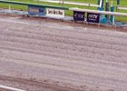 Cushion Track issues caused several rainouts during the recently concluded Santa Anita meet.