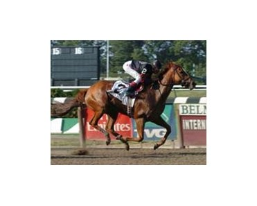 "Ruffian winner Ginger Punch likely to run in the Beldame.<br><a target=""blank"" href=""http://www.bloodhorse.com/horse-racing/photo-store?ref=http%3A%2F%2Fpictopia.com%2Fperl%2Fgal%3Fprovider_id%3D368%26ptp_photo_id%3D2210028%26ref%3Dstory"">Order This Photo</a>"