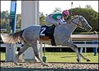 "Jibboom captures her first graded stakes in the Raven Run at Keeneland.<br><a target=""blank"" href=""http://www.bloodhorse.com/horse-racing/photo-store?ref=http%3A%2F%2Fpictopia.com%2Fperl%2Fgal%3Fprovider_id%3D368%26ptp_photo_id%3D2568150%26ref%3Dstory"">Order This Photo</a>"