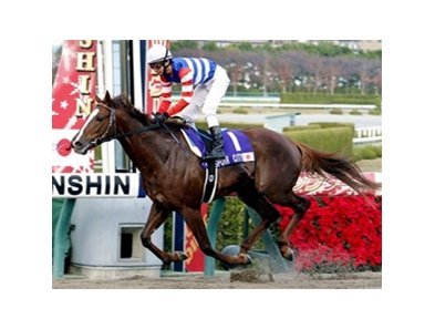 Espoir City, with jockey Tetsuzo Sato, crosses the finish line to win the Japan Cup Dirt at Hanshin Race Course in Japan.