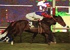 Dahlia Handicap winner Follow the Money (#3), winning the Violet Handicap at the Meadowlands in September.
