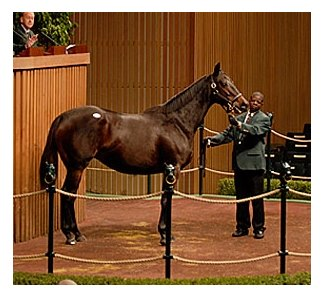 Grade I winner Island Sand brought the session's highest price of $4.2 million.