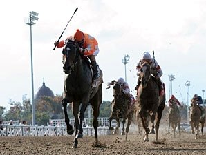 Fair Grounds to Offer Night Racing