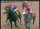 Buddha, right, beats Medaglia d'Oro, center, and Sunday Break, far left, to the wire to win the the Wood Memorial.