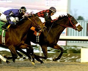 My List Rallies For Bessarabian Win