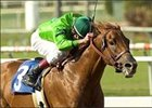"Desert Code, ridden by Richard Migliore, storms to the wire in the Affirmed Handicap.<br><a target=""blank"" href=""http://www.bloodhorse.com/horse-racing/photo-store?ref=http%3A%2F%2Fpictopia.com%2Fperl%2Fgal%3Fprovider_id%3D368%26ptp_photo_id%3D1444276%26ref%3Dstory"">Order This Photo</a>"