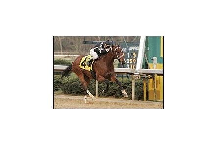 Southwest Stakes winner Teuflesberg won't run in the 2007 Preakness.