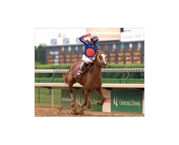 "Kentucky Oaks winner Rags to Riches will run against the boys in the Belmont.<br><a target=""blank"" href=""http://www.bloodhorse.com/horse-racing/photo-store?ref=http%3A%2F%2Fpictopia.com%2Fperl%2Fgal%3Fprovider_id%3D368%26ptp_photo_id%3D1126060%26ref%3Dstory"">Order This Photo</a>"