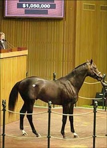 Fusaichi Pegasus colt tops Keeneland one-day two-year-olds sale.