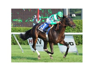 "Mushka opened a clear lead in the stretch and held on for a 1 1/4-length victory in the Glen Falls Handicap at Saratoga.<br><a target=""blank"" href=""http://www.bloodhorse.com/horse-racing/photo-store?ref=http%3A%2F%2Fpictopia.com%2Fperl%2Fgal%3Fprovider_id%3D368%26ptp_photo_id%3D8461714%26ref%3Dstory"">Order This Photo</a>"
