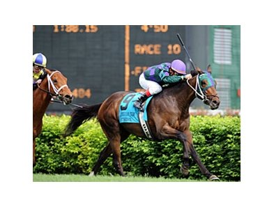 Orthodox won the 2009 American Turf Stakes (gr. IIIT) at Churchill Downs.
