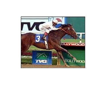 Your Tent Or Mine wins the Hollywood Prevue Stakes, Saturday at Hollywood Park.