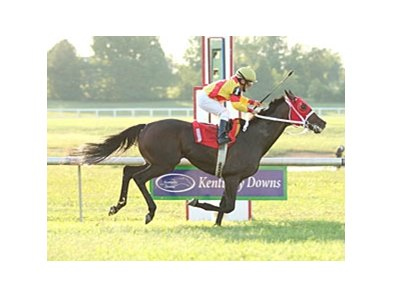 Rumor Has It, who won last year's Kentucky Cup Turf, is back to try again in 2009.