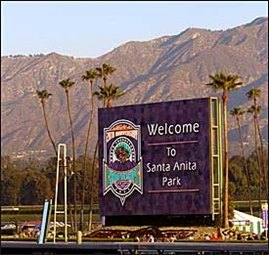Sun Shining Bright at Santa Anita for Breeders' Cup