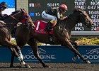 Black Hornet Speeds Away in Vigil Stakes
