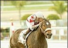 Ema Bovary won her eighth race in a row in the Las Flores.
