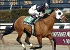 "Attila's Storm captures Toboggan 'Cap  at Aqueduct.<br><a target=""blank"" href=""http://www.bloodhorse.com/horse-racing/photo-store?ref=http%3A%2F%2Fpictopia.com%2Fperl%2Fgal%3Fprovider_id%3D368%26ptp_photo_id%3D866348%26ref%3Dstory"">Order This Photo</a>"