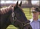 1977 Triple Crown winner Seattle Slew, shown here in September with majority owner Mickey Taylor, will return to the breeding shed at Three Chimneys Farm in Kentucky.