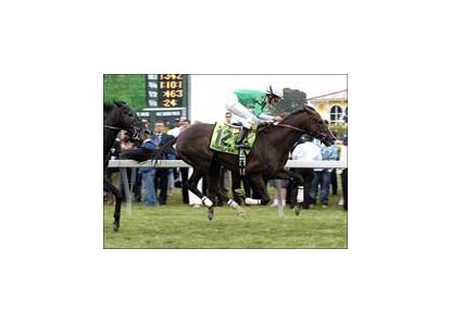 "Remarkable News wins accident-marred Dixie.<br><a target=""blank"" href=""http://www.bloodhorse.com/horse-racing/photo-store?ref=http%3A%2F%2Fpictopia.com%2Fperl%2Fgal%3Fprovider_id%3D368%26ptp_photo_id%3D1229970%26ref%3Dstory"">Order This Photo</a>"