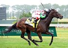 "C. S. Silk flies home in the Just a Game Stakes.<br><a target=""blank"" href=""http://www.bloodhorse.com/horse-racing/photo-store?ref=http%3A%2F%2Fpictopia.com%2Fperl%2Fgal%3Fprovider_id%3D368%26ptp_photo_id%3D9561684%26ref%3Dstory"">Order This Photo</a>"