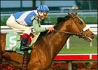 Barbaro comes into the Florida Derby with an eight-week layoff that followed this Holy Bull victory.