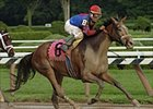 Society Selection prevails over Ashado in Saturday's Alabama Stakes at Saratoga.