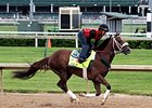 Mr. Z
