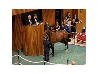 Hip 31, an A.P. Indy colt, brings $1.2 million at the Fasig-Tipton Saratoga Yearling Sale Aug. 4.