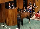 Strong Market Opens FT Saratoga Sale