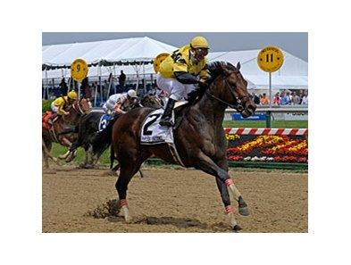 "Everyday Heroes leaves the rest behind in the Hirsch Jacobs Stakes.<br><a target=""blank"" href=""http://www.bloodhorse.com/horse-racing/photo-store?ref=http%3A%2F%2Fpictopia.com%2Fperl%2Fgal%3Fprovider_id%3D368%26ptp_photo_id%3D8117570%26ref%3Dstory"">Order This Photo</a>"