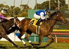 "The Mailet claimed an upset victory in the Miesque Stakes at Hollywood Park.<br><a target=""blank"" href=""http://www.bloodhorse.com/horse-racing/photo-store?ref=http%3A%2F%2Fpictopia.com%2Fperl%2Fgal%3Fprovider_id%3D368%26ptp_photo_id%3D8660956%26ref%3Dstory"">Order This Photo</a>"