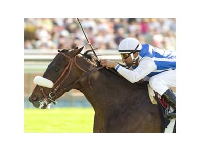 Silent Name will stand at Adena Springs.