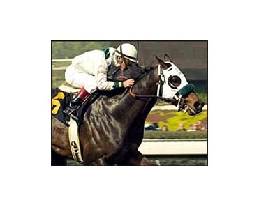 Bob and John, with jockey Victor Espinoza aboard, wins the Sham Stakes, Saturday at Santa Anita.