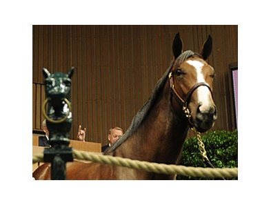 Keeneland September sale.