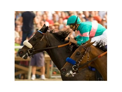 "Zenyatta won the Clement L. Hirsch Stakes on August 9.<br><a target=""blank"" href=""http://www.bloodhorse.com/horse-racing/photo-store?ref=http%3A%2F%2Fpictopia.com%2Fperl%2Fgal%3Fprovider_id%3D368%26ptp_photo_id%3D8394821%26ref%3Dstory"">Order This Photo</a>"