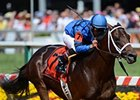 Hamazing Destiny Scores First Stakes Win