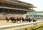 Wagering on racing in the United States continued its negative trend in July.