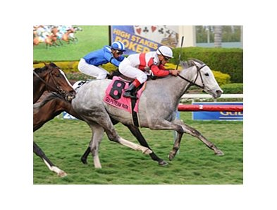 Hit It Rich overtakes Aqsaam late to win the Orchid Stakes at Gulfstream Park.