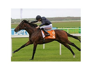 "Roderic O'Connor sprints home in the Irish Two Thousand Guineas.<br><a target=""blank"" href=""http://www.bloodhorse.com/horse-racing/photo-store?ref=http%3A%2F%2Fpictopia.com%2Fperl%2Fgal%3Fprovider_id%3D368%26ptp_photo_id%3D9533261%26ref%3Dstory"">Order This Photo</a>"