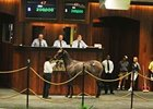 Hip 47 brings $200,000, the high price for the opening session of the OBS August Yearling Sale.
