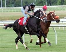 Scrappy T Heads Field for Indiana Derby