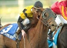 Awesome Gem - Breeders' Cup Classic