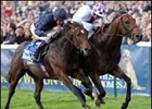 2006 Dewhurst stakes winner Teoflio (right) has been retired from racing.
