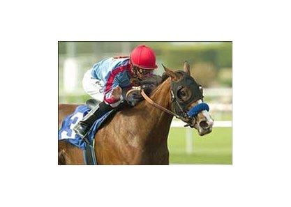 "Tough Tiz's Sis wins the Hollywood Oaks.<br><a target=""blank"" href=""http://www.bloodhorse.com/horse-racing/photo-store?ref=http%3A%2F%2Fpictopia.com%2Fperl%2Fgal%3Fprovider_id%3D368%26ptp_photo_id%3D1396405%26ref%3Dstory"">Order This Photo</a>"