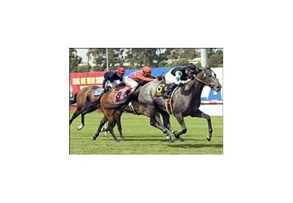 Three Degrees, shown winning the Honeymoon (gr. IIT) in June, makes her main track debut in the La Brea.
