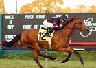 Citronnade went out a winner in Sunday's Dahlia (gr. IIT) at Hollywood Park.